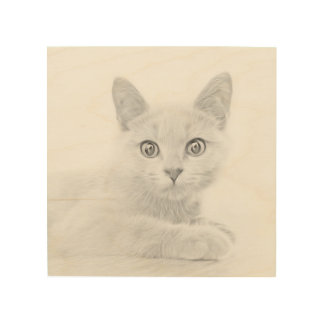 SUPER CUTE Cat Portrait Fine Art Photograph Wood Canvases