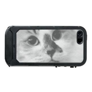 SUPER CUTE Cat Portrait Photograph Incipio ATLAS ID™ iPhone 5 Case
