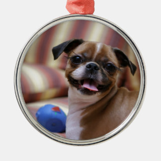 Super Cute dog with her favourite ball Silver-Colored Round Decoration