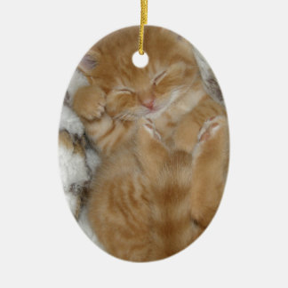 Super Cute Ginger Sleeping Kitten Ceramic Oval Decoration