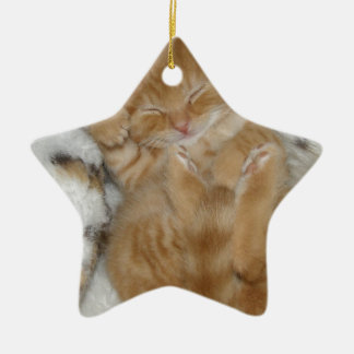 Super Cute Ginger Sleeping Kitten Ceramic Star Decoration