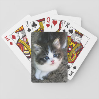 SUPER CUTE Kitten Customizable Poker Deck