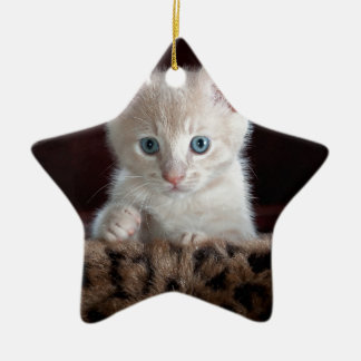 Super Cute Kitten with Beautiful Eyes Ceramic Star Decoration