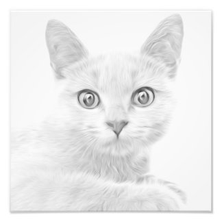 SUPER CUTE Kitty Portrait Photo Art