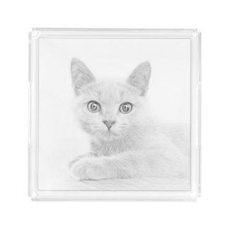 Super Cute Scottish Fold Kitten Cat Acrylic Tray