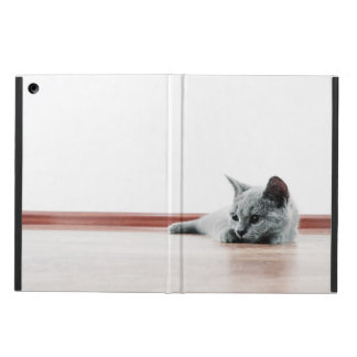 Super Cute Scottish Fold Kitten Cat Cover For iPad Air