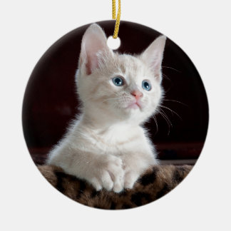 Super Cute White Kitten Round Ceramic Decoration