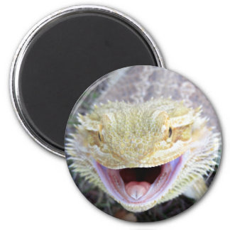 Super Happy Bearded Dragon Magnet