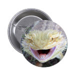 Super Happy Bearded Dragon Pinback Buttons