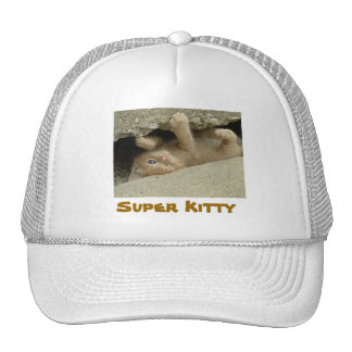 Super Hero Kitty Cat Humor Trucker Hat