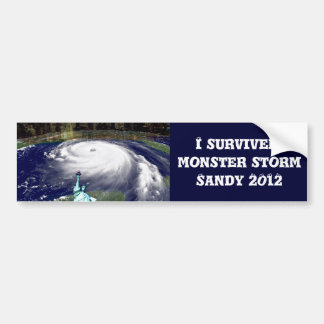 Super Storm Sandy 2012,Eye of the storm_ Bumper Stickers