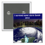 Super Storm Sandy 2012,Eye of the storm_ Pins