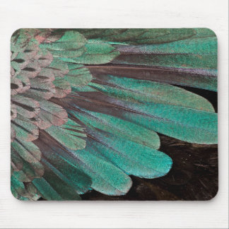 Superb Bird of Paradise feathers Mouse Mat