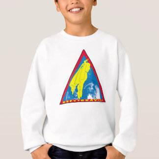 Superman 70 sweatshirt