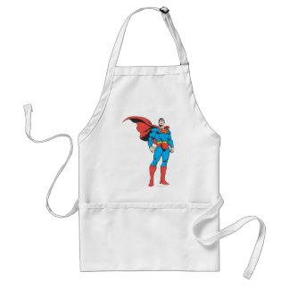 Superman Posing 3 Aprons