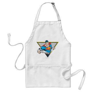 Superman Revealed Standard Apron