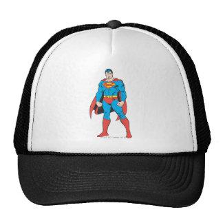 Superman Standing Mesh Hat