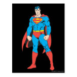 Superman Standing Postcard