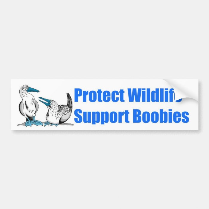 Support Boobies! Bumper Sticker