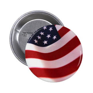 Support President Obama Pin