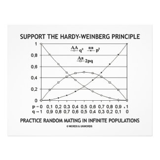Support The Hardy-Weinberg Principle Practice 21.5 Cm X 28 Cm Flyer