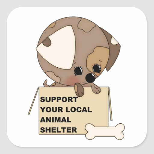 Support Your Animal Shelter Sticker