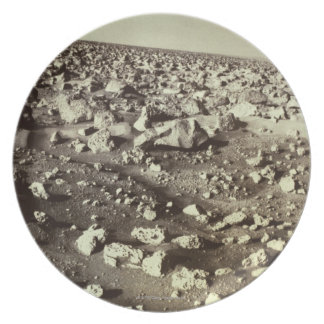 Surface of Mars Dinner Plates