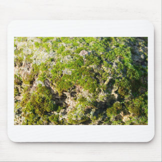 Surface of the old boulders with moss closeup mouse pad