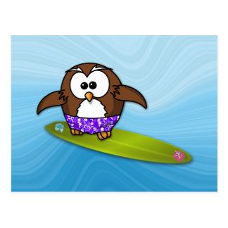 surfer owl postcard