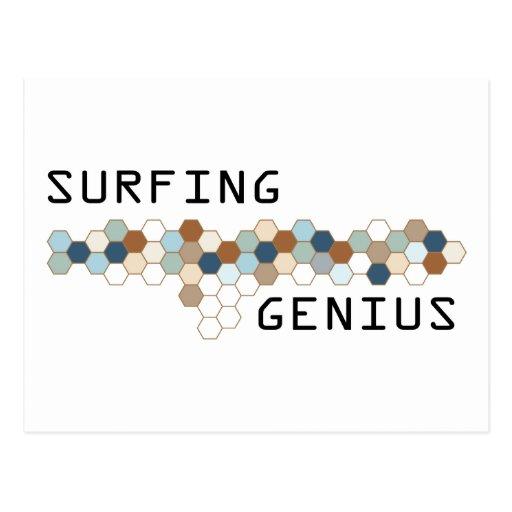 Surfing Genius Postcards
