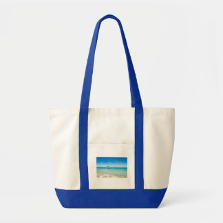 Surfing in the blue tote bag