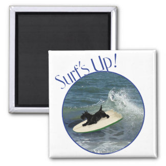 Surfing Scottish Terrier Square Magnet