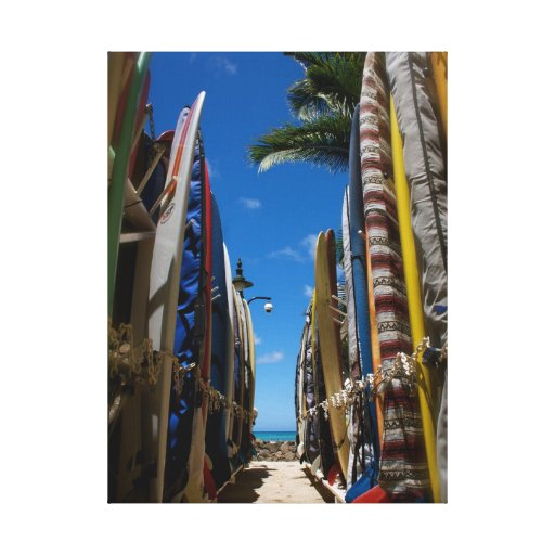 Surf's Up Stretched Canvas Prints