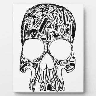 Surgical Skull Plaque