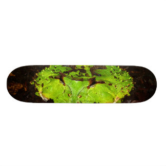 Surinam Horned Frog Ceratophrys Cornuta Skateboard
