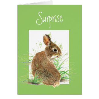 Surprise, You're Getting a Note from Me, Rabbit Card