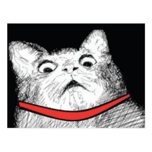 Surprised Cat Gasp Meme - Postcard