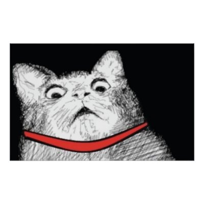 surprised cat gasp meme poster rf75f794c1c574582ba67fc0d6acbdec7 aev9w 400