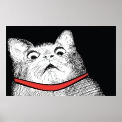 Surprised Cat Gasp Meme - Poster