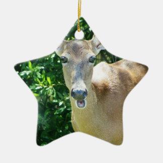 surprised deer.jpg christmas ornament