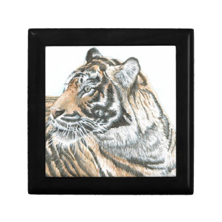 Surprised Tiger Watercolour Gift Box
