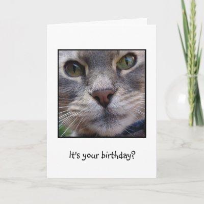 Surprized Cat, It's your birthday? Greeting Card   Zazz