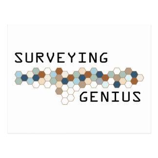 Surveying Genius Post Card