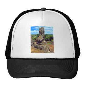 Surveyng His Domain Trucker Hat