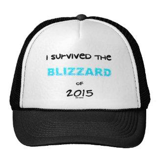 Survived the Blizzard 2015 Trucker Hat