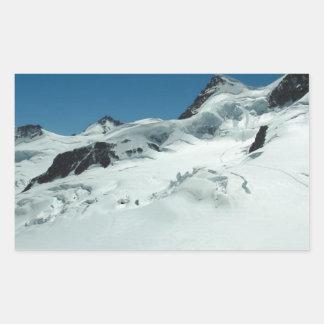 Surviving the cold season rectangular sticker