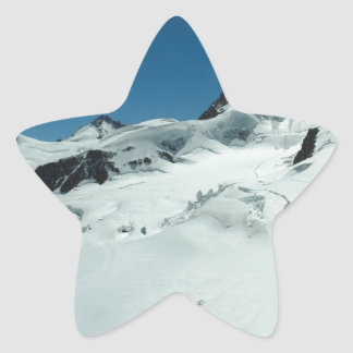 Surviving the cold season star stickers
