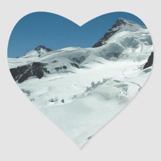 Surviving the cold season heart sticker