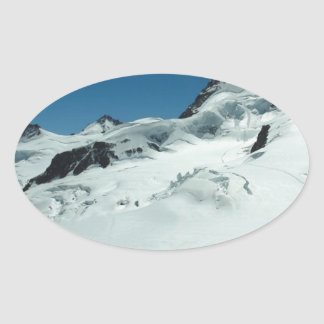 Surviving the cold season oval sticker
