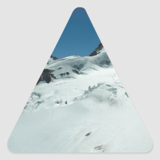 Surviving the cold season triangle stickers